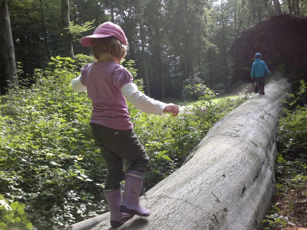 Das Bild zeigt eine Waldszene. Ein großer Baum liegt auf dem Boden. Er hat einen Durchmesser von ca. einem Meter. Zwei Kinder balancieren auf dem Baum und bewegen sich von der Kamera weg. Ein Kind ist pink gekleidet und steht im Vordergrund. Ein weiteres Kind ist blau gekleidet und befindet sich im Bildhintergrund.